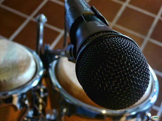 mejores microfonos dinamicos