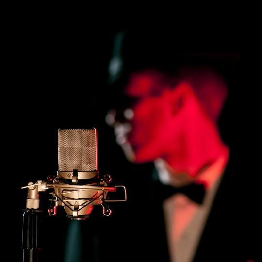 microfonos de condensador para cantar